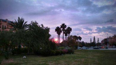 Foto de Semana 7 al 13 de diciembre